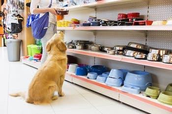 Zoofachhandel Ladenbau